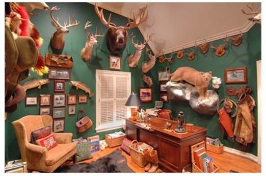 taxidermy open house